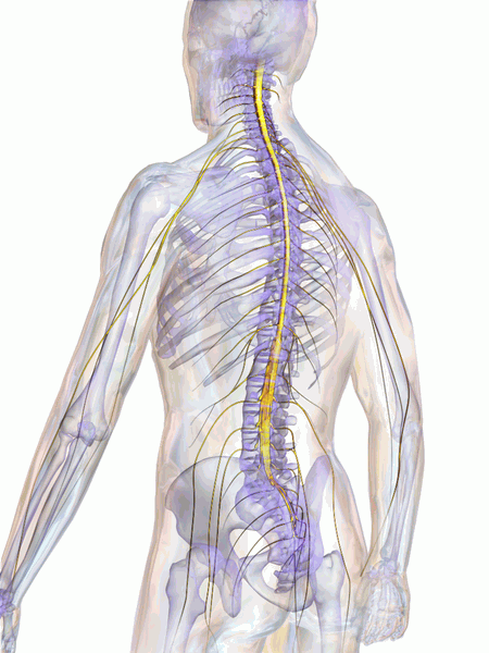 ROLE-OF-INTRATHECAL-THERAPY-IN-PAIN-MANAGEMENT